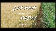 Lessons from the Farm